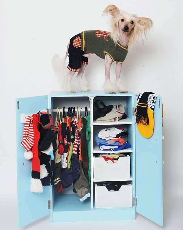 dog-wardrobe